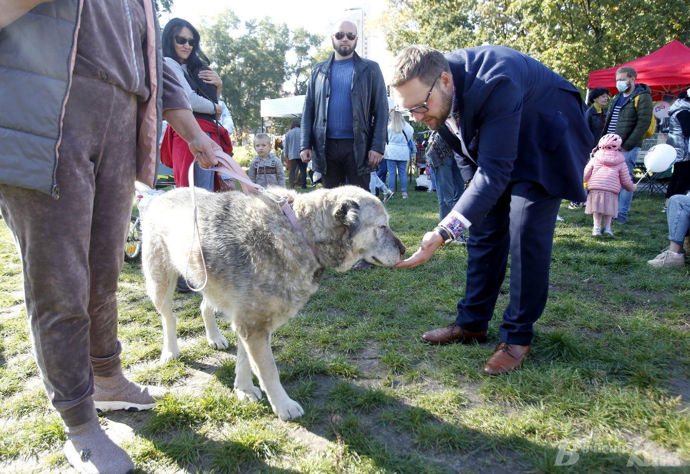 Відповідальний власник – запорука комфортного життя тварини